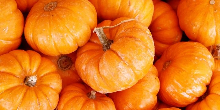 5 Foods That Do Not Enjoy Low Temperatures Pumpkin