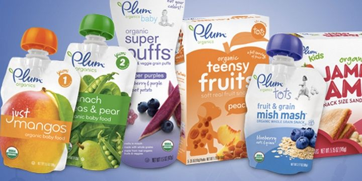 6 Companies for Applicants Who Dream of a Meaningful Job Plum Organics