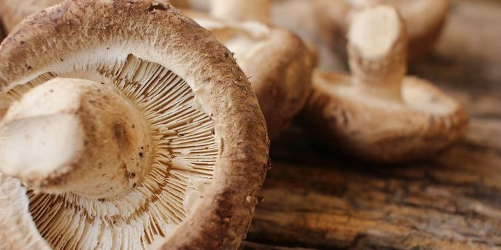 Best Foods for Healthy Locks Shiitake Mushrooms