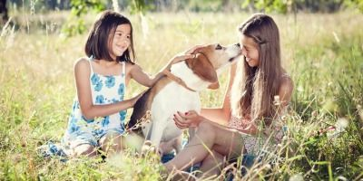 6 Dog Breeds That Easily Make Friends with Kids